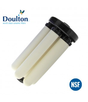 Doulton RIO 2000 High Flow Filters And Carousel Module DoultonW9381000Doulton